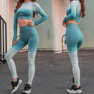 High Waist Seamless Ombre Push Up 2 Piece Fitness Set