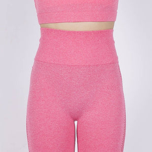 Knit Seamless Workout Long Sleeves and Leggings