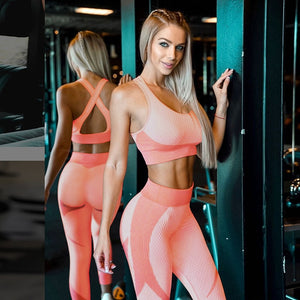 Puregemco Women Active Wear Gym Fitness 2 Piece Set