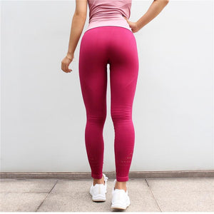 Seamless MeshFlex Tummy Control Anti-cellulite Push Up Workout Leggings