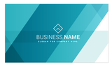 Business Card - FT - HDS-46 - New Era Print Solutions