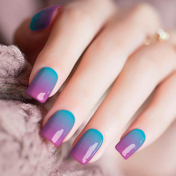 Purple and Blue Gradient