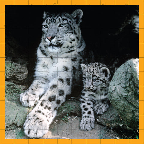 WWF 100 Piece Snow Leopards Puzzle