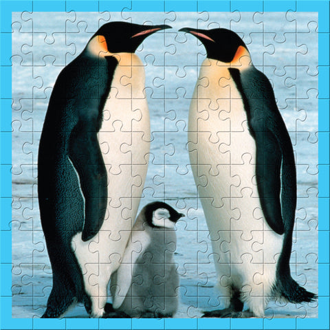 WWF 100 Piece Penguins Puzzle