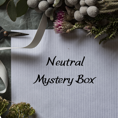 Mystery Box - Gender Neutral