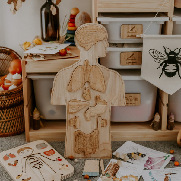 Wooden Anatomy Puzzle by Q Toys