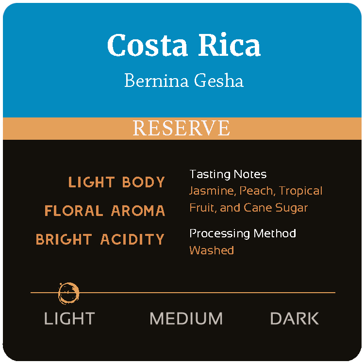 Costa Rica Bernina Gesha