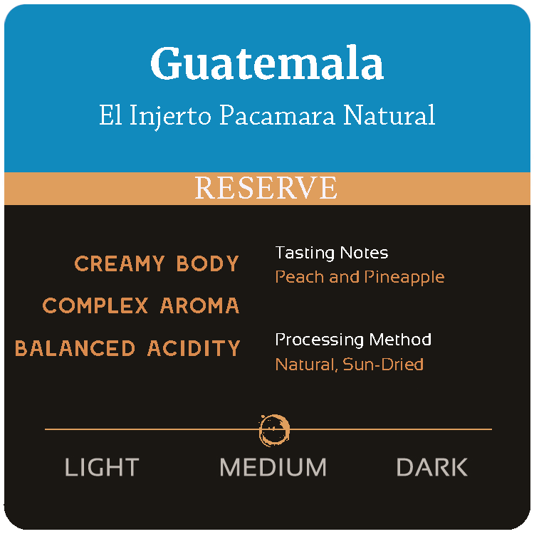Guatemala El Injerto Pacamara Natural *SOLD OUT*