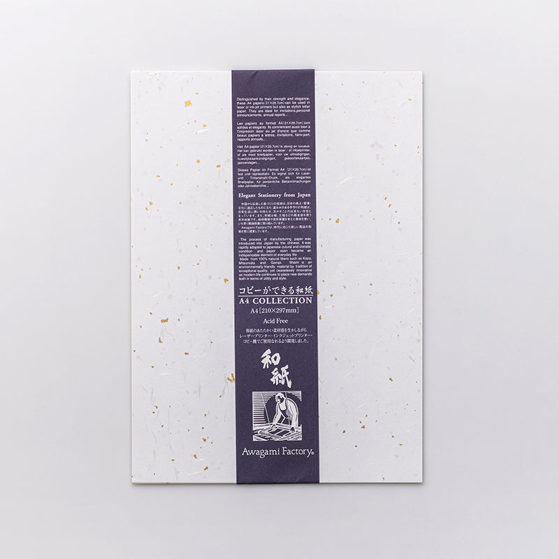 Washi Paper Pack - Fiber, Gold & Silver Inclusions (10 A4 sheets)