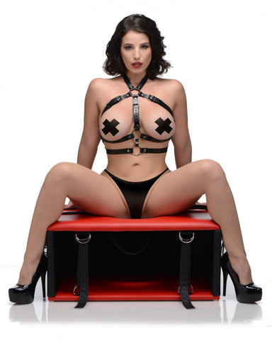 Queening Chair A Bondage Furniture Facesitting Sex Toy for Couples - PleasureYouPleasureMe