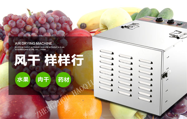 commercial 10 Tray Stainless Steel Food Jerky Fruit Dehydrator