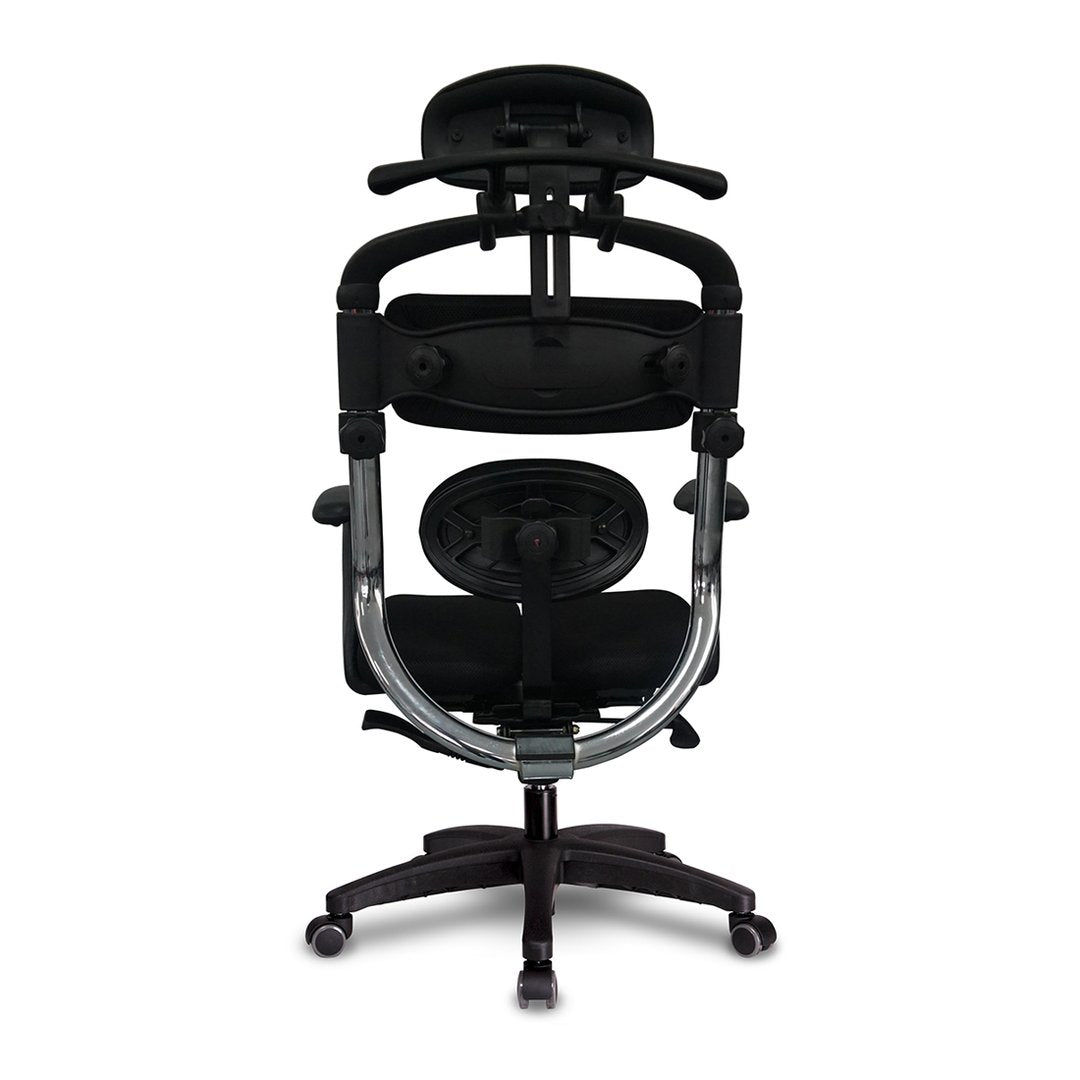 HARA-C with Stable Back and Lumbar Support