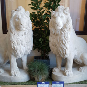 Set Of 2 Sitting Lions - Roman Stone Finish sculpture