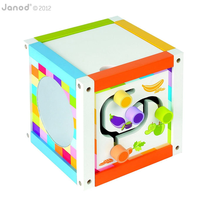 Janod Multi-Activity Box