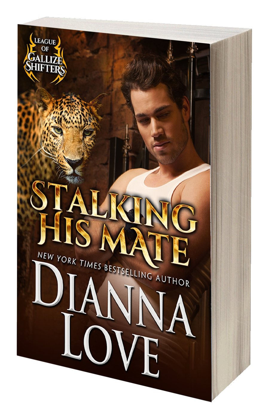 Order a signed copy of Stalking His Mate: League of Gallize Shifters book 3