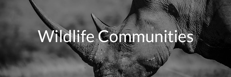 Wildlife Communities