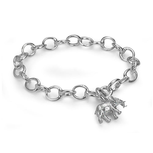 Sterling Silver Hinged Charm Bracelet, Medium