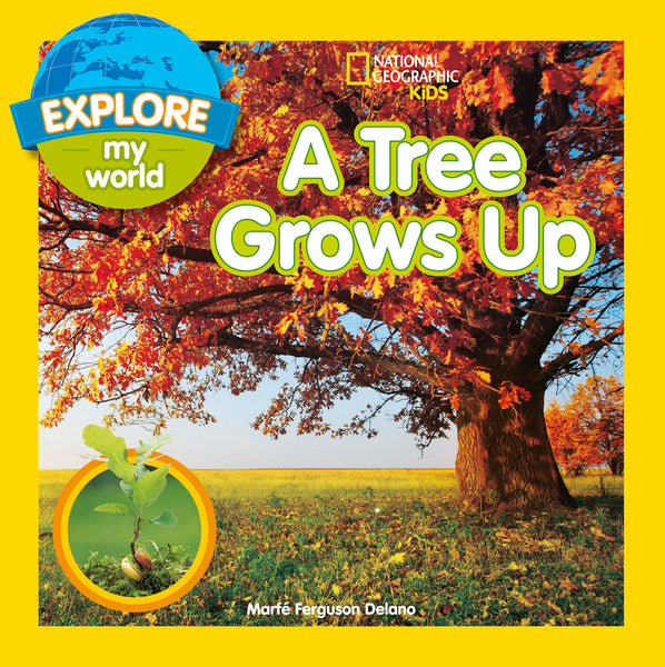 Explore My World — A TREE GROWS UP