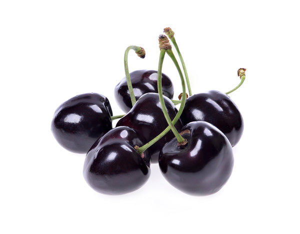 Black Cherry Jelly Bean SC - WF