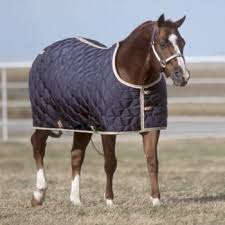 Horse Blanket - BIG D STABLE BLANKET/HOOD - BIG D - Mock Brothers Saddlery and Western Wear