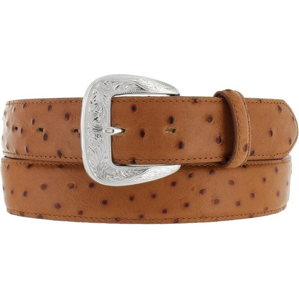 Belts - Tony Lama Ostrich Mens Belt/1377L - Tony Lama - Mock Brothers Saddlery and Western Wear