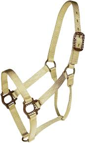 HEADSTALL - MUSTANG NYLON HALTER/85272 - MUSTANG - Mock Brothers Saddlery and Western Wear