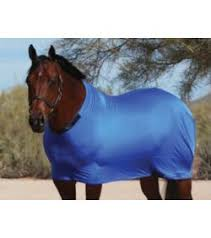 Horse Blanket - SLEAZY SLEEPWEAR FOR HORSES - SLEAZY SLEEPWEAR - Mock Brothers Saddlery and Western Wear
