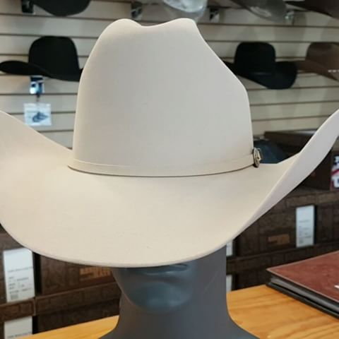 Hats - Resistol Sterling Horse A4 Chamois Hat - Resistol - Mock Brothers Saddlery and Western Wear