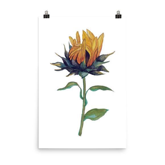 Sunflower Print