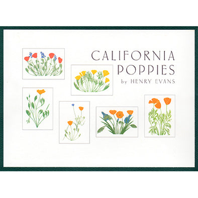CA Poppies Boxed Notes - Oakland Museum of California Store