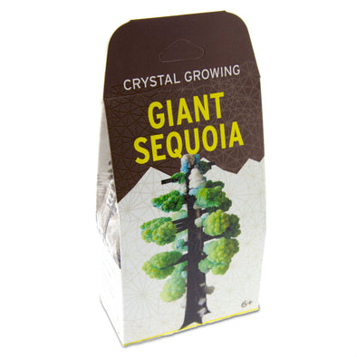 Giant Sequoia Tree Crystal Growing Kit - Oakland Museum of California Store