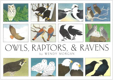 Owls, Raptors & Ravens Boxed Notecards
