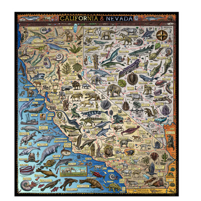 Ray Troll's Fossil Map of California & Nevada - Oakland Museum of California Store