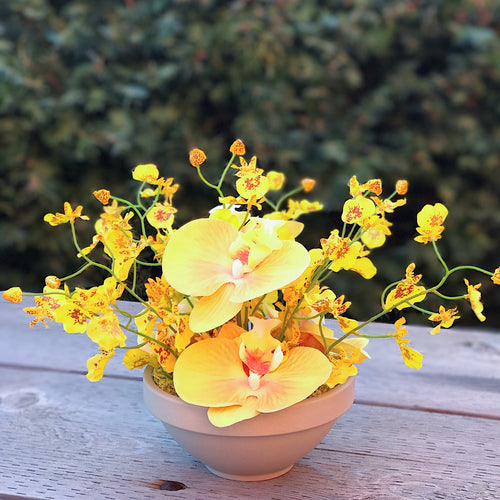 Blooming Orchid Bowl - Decor Garden - SEO - Image