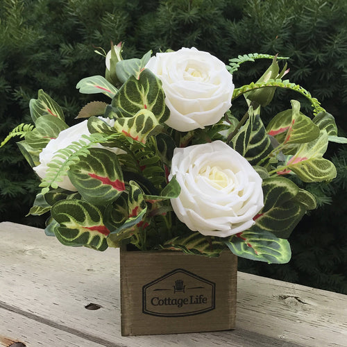 Wild Rose Box - Decor Garden - SEO - Image