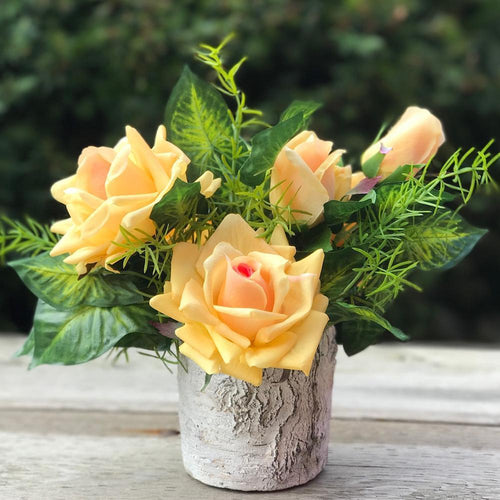 Pot of Rose - Yellow/Birch - Decor Garden - SEO - Image