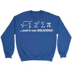 GearLogic - Science Jewelry & Science Shirts | I Ate Some Pie Math Sweatshirt