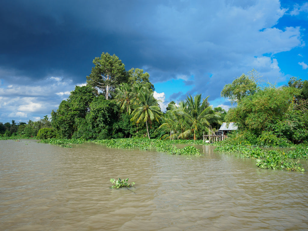 Saigon River boat tour to Cu Chi tunnels