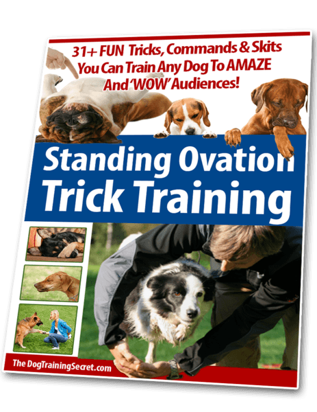 Standing Ovation Trick Training