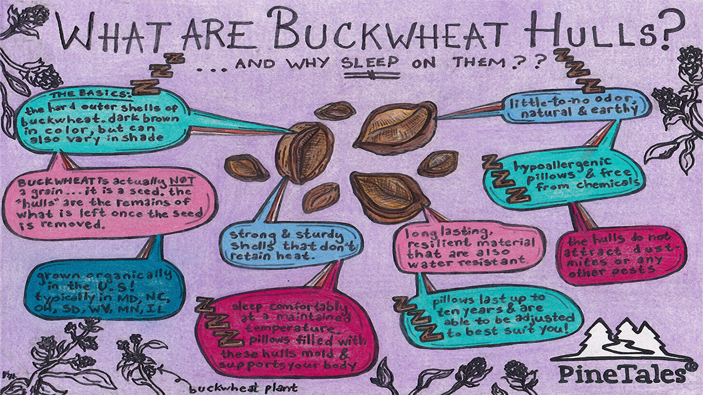 What are Buckwheat Hulls used for Buckwheat Pillows - PineTales®