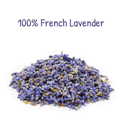 French Lavender Refill for Buckwheat Pillows -PineTales