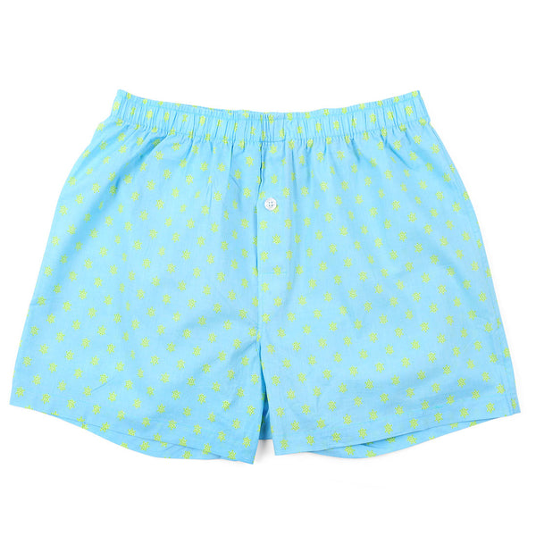 Turtles Blue Men's Boxers