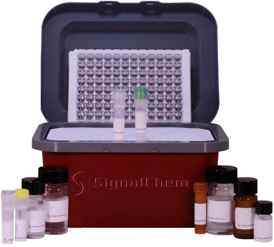 PAD Cocktail Inhibitor Screening Kit (P37C-863)