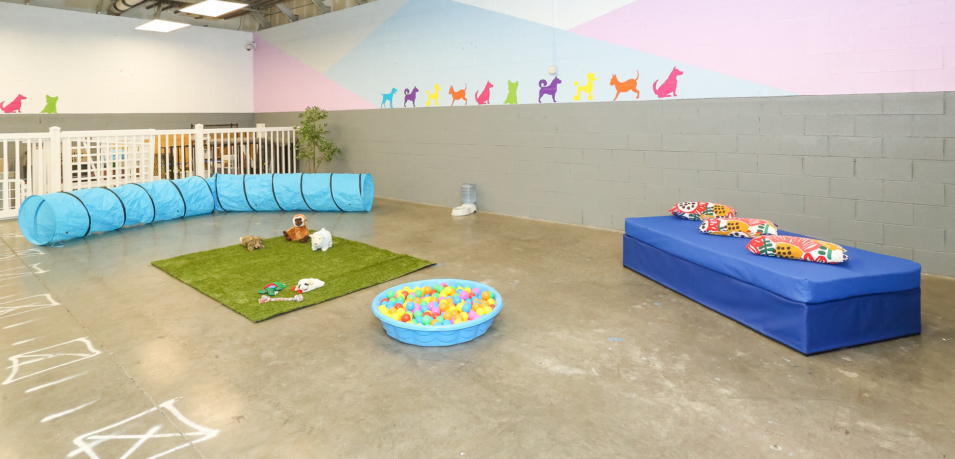Boogie Time LV Pet Play Area