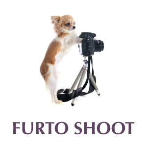 Boogie Time LV Furto Shoot Services