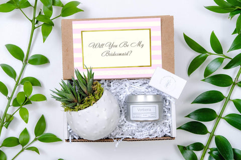 Bridesmaid Gift Box- a succulent in White Cactus planter and