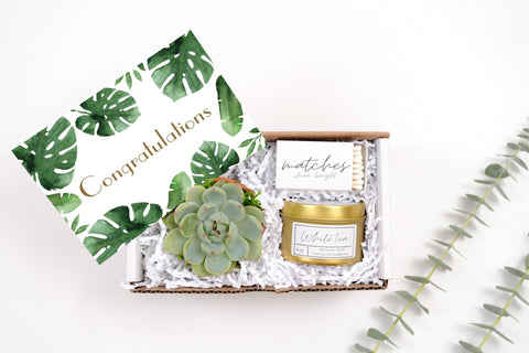 Congratulation Mini Gift Box - with a succulent in terra