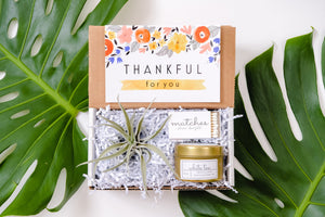 Gift Box | Air Plant Gift| Candle Gift|Thanksgiving