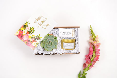 Mothers Day Gift Box Succulent Gift box set | Send a Gift |