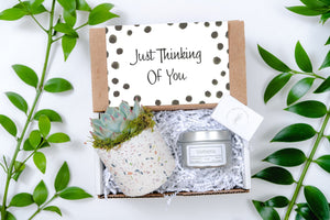 Thinking of you Gift Box | Best Friend Gift|Send a Gift Box|